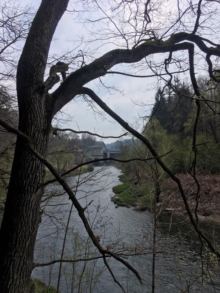 dolina bobru
